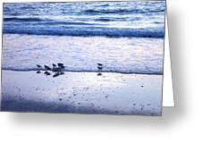 Sandpiper Beach I Greeting Card