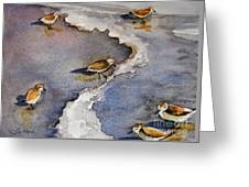 Sandpiper Seashore Greeting Card