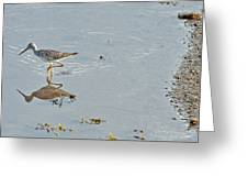 Sandpiper's Mirror Greeting Card