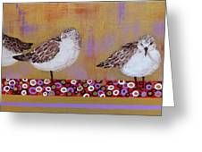 Sandpipers On The Emerald Coast Greeting Card