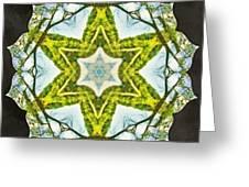 Sandstar Greeting Card