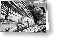 Sandstone Wall Greeting Card
