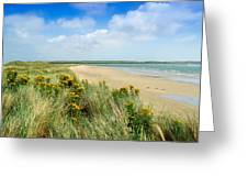 Sandunes At Fethard, Co Wexford, Ireland Greeting Card