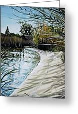 Sandy Reeds Greeting Card