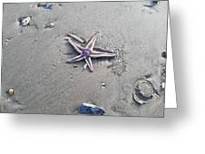 Sandy Star Greeting Card