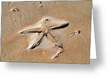 Sandy Starfish Greeting Card