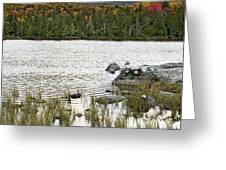 Sandy Stream Pond View Of Baxter Peak In Baxter State Park Maine Greeting Card by Brendan Reals