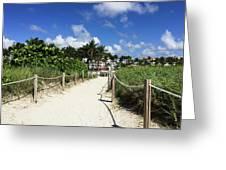 Sandy Trail Miami Florida Greeting Card
