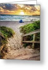 Sandy Walk Down To The Beach Greeting Card