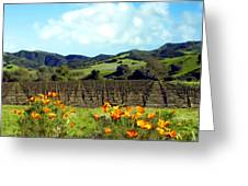 Sanford Ranch Vineyards Greeting Card by Kurt Van Wagner