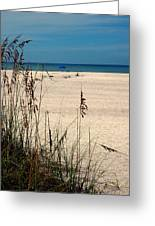 Sanibel Island Beach Fl Greeting Card
