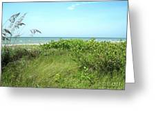 Sanibel Island Greeting Card