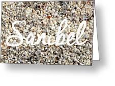 Sanibel Island Seashells Greeting Card