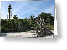 Sanibel Light And Driftwood Greeting Card