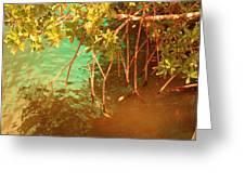 Sanibel Mangroves Greeting Card