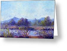 Santa Ana River Greeting Card