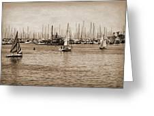 Santa Barbara Harbor Sepia Greeting Card