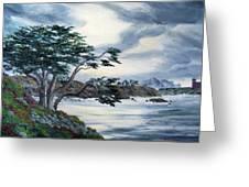 Santa Cruz Cypress Tree Greeting Card