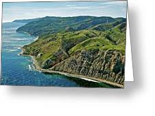 Santa Cruz Island Greeting Card by Liz Vernand