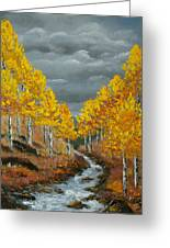 Santa Fe River Aspens Greeting Card