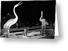 Santa Monica Birds Eye View Greeting Card