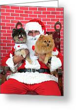 Santa Paws With Two Dogs Greeting Card