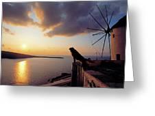 Santorini 014 Greeting Card