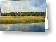 Sapelo Marsh Greeting Card
