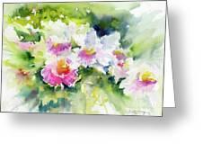 Sarasota Orchids Greeting Card