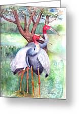 Sarus Cranes Greeting Card