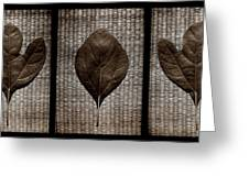 Sassafras Leaves With Wicker Greeting Card