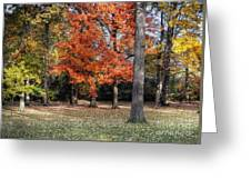 Saturday Here In The Park Greeting Card