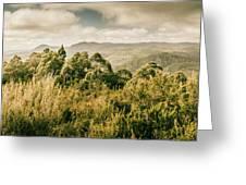 Savage River Lookout, Tarkine, Tasmania Greeting Card