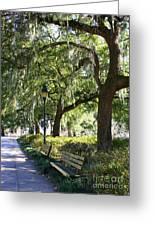 Savannah Benches Greeting Card