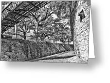 Savannah Perspective - Black And White Greeting Card