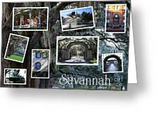 Savannah Scenes Collage Greeting Card
