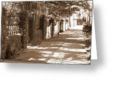 Savannah Sepia - Sunny Sidewalk Greeting Card