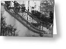 Savannah Stoops - Black And White Greeting Card