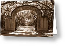 Savannaha Sepia - Wormsloe Plantation Gate Greeting Card