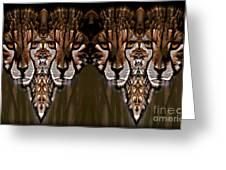 Save The Cheetahs Greeting Card