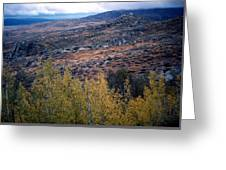 Sawtooth National Forest 1 Greeting Card