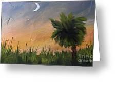 Sc Sunset  Greeting Card