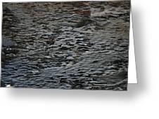 Scaley Log Greeting Card