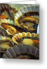 Scallops At Rialto Market In Venice Greeting Card