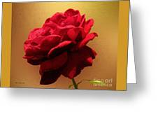 Scarlet Flamenco Greeting Card