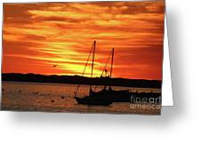 Scarlet Sunrise On Provincetown Pier 1  Greeting Card