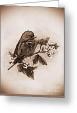 Scarlet Tanager - Tint Greeting Card