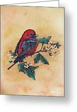 Scarlet Tanager - Acrylic Painting Greeting Card