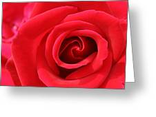 Scarlet Vortex Greeting Card