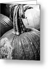 Scary Stem Pumpkin Greeting Card